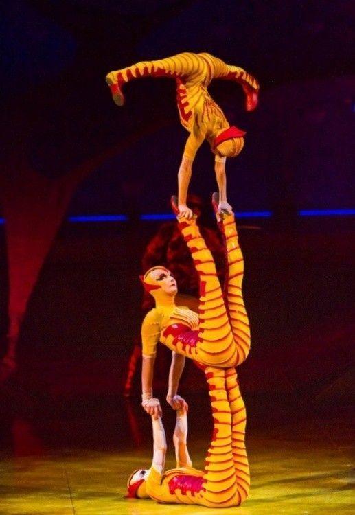 Le cirque ... 2d780bf9