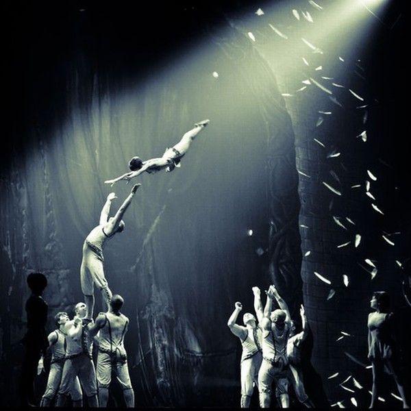 Le cirque ... - Page 2 858227e8