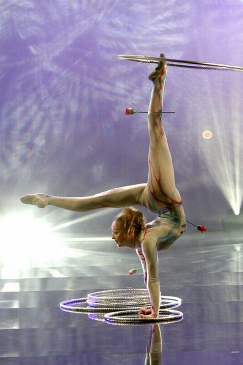 Le cirque ... B19cecf4